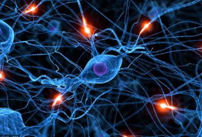 epilepsia y autismo