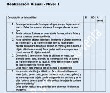 realizacion visual Nivel 1 para Autismo